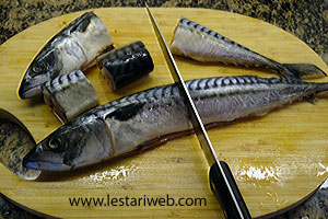 Unduh 92+ Gambar Ikan Tongkol Kecap HD Terpopuler