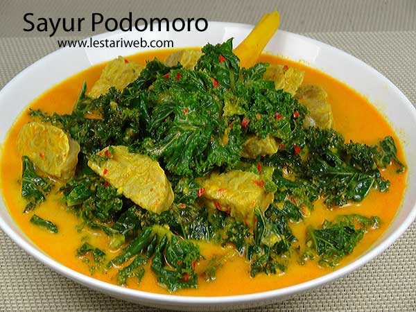 Curly Kale in Rich Coconut Sauce | Sayur Podomoro