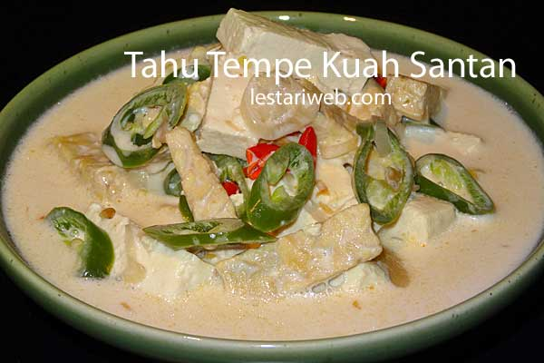 Tofu Tempe in Coconut Sauce